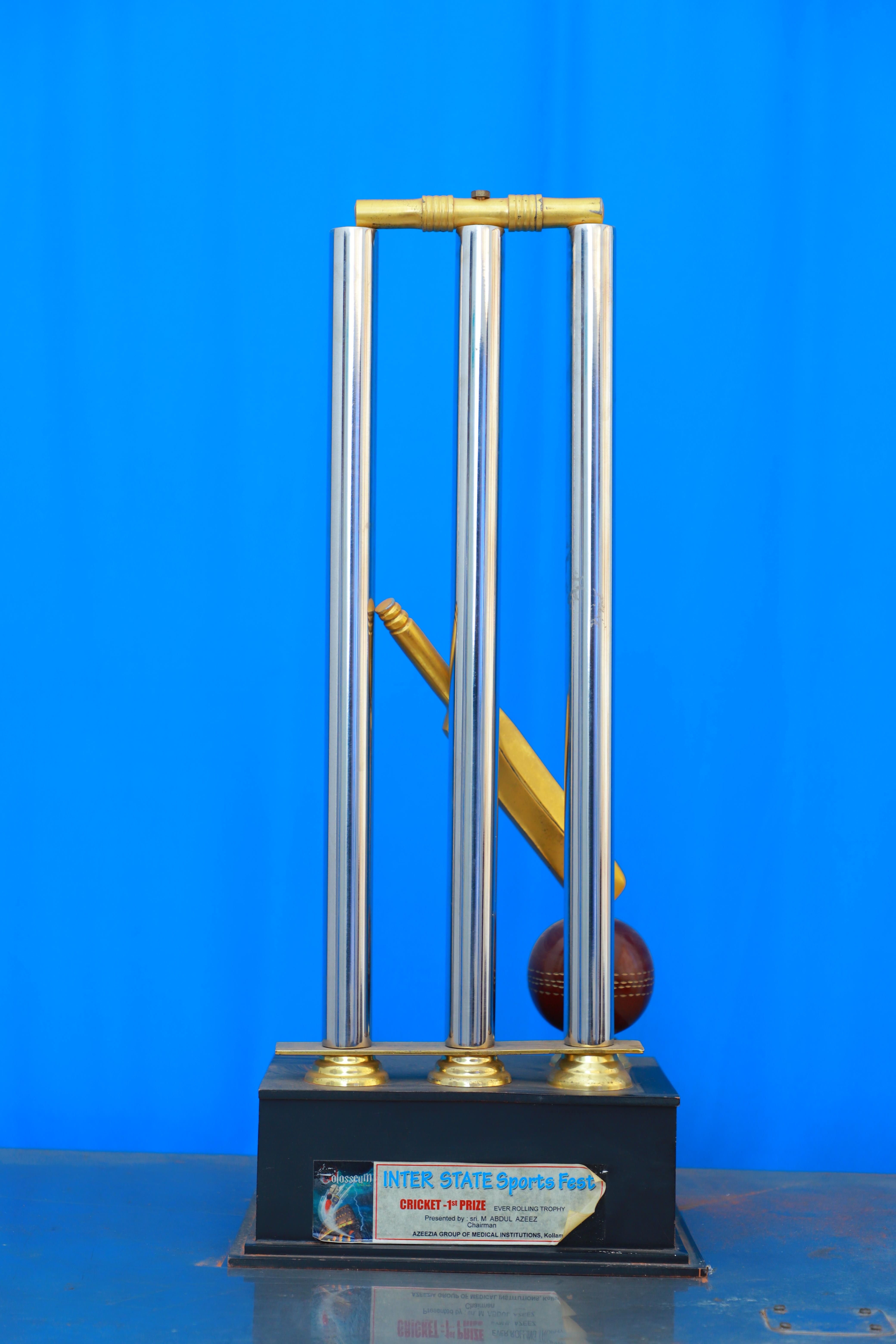 Interstate SportsFest Cricket Champions